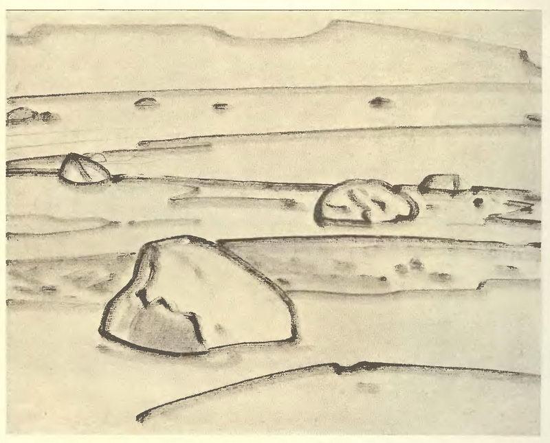 albomnii_list_1915.jpg