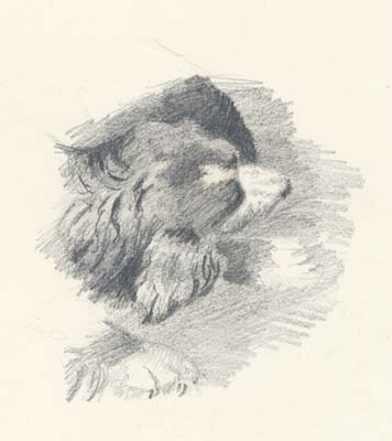bekas_1893.jpg