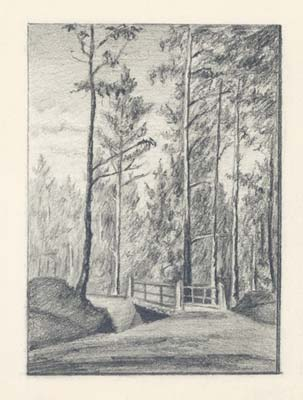 second_bridge_on_road_to_threshing_floor_in_state_forest_1893.jpg