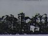 gogrod-_utro_1901.jpg